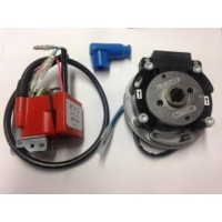TM MODENA VARIABLE IGNITION, PVL